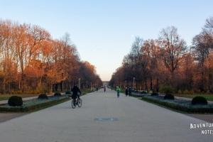 Дрезден, парк