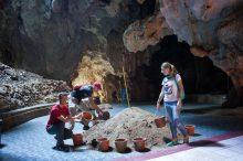 Ремонт в пещере обезьян