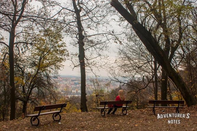 На склонах Петршинского холма