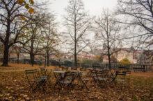 В парке Праги