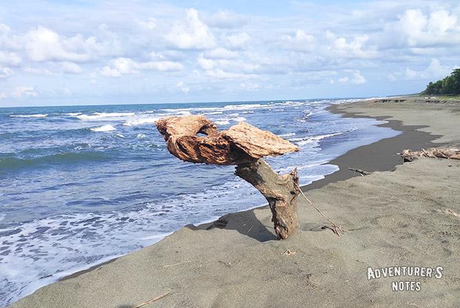 Побережье Карибского моря, Коста-Рика
